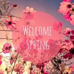 ¡Bienvenida Primavera!