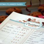 ¿Cómo Se Organizan Para Navidad?